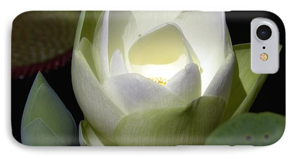 Lotus Flower In White IPhone Case by Julie Palencia