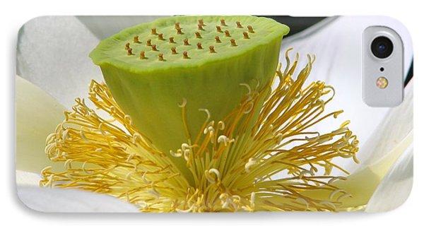 Lotus Flower With Pod Phone Case by Eva Kaufman
