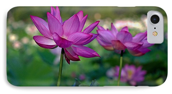 IPhone Case featuring the photograph Lotus Flowers by Jerry Gammon