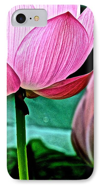 Lotus Heaven - 128 IPhone Case by Larry Knipfing