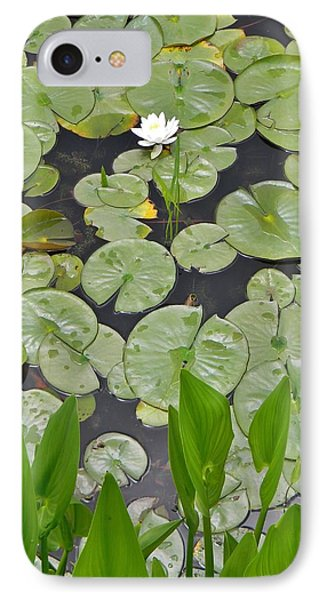 Lotus Pads IPhone Case by Jean Goodwin Brooks