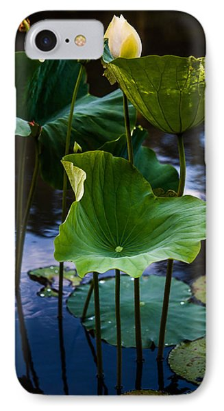 Lotuses In The Evening Light. Vertical Phone Case by Jenny Rainbow