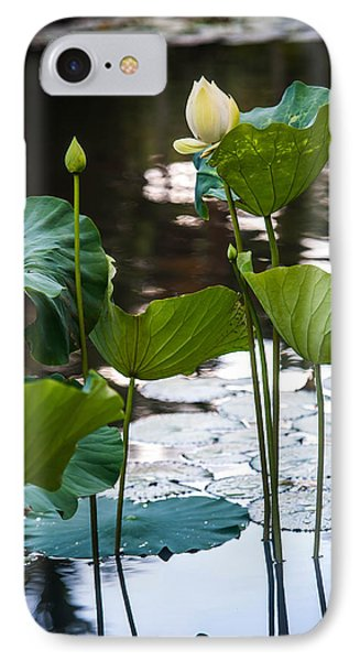 Lotuses In The Pond Phone Case by Jenny Rainbow