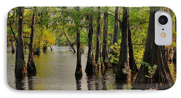 Louisiana Cypress Swamp IPhone Case by Ester  Rogers