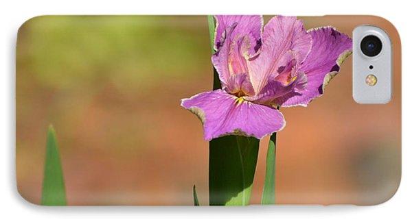 Louisiana Iris IPhone Case by Jodi Terracina
