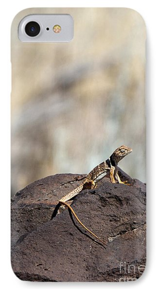 Lounging Lizard IPhone Case by Martha Marks
