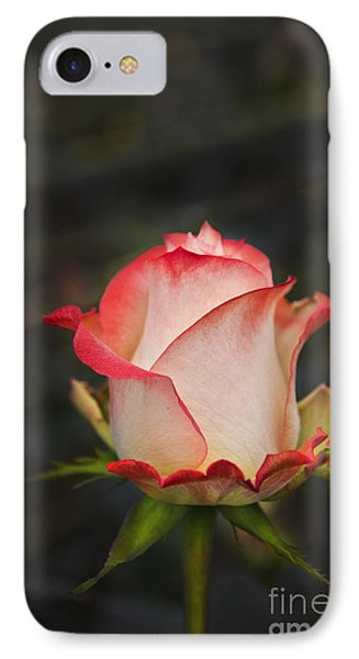 Love Is A Rose II IPhone Case by Al Bourassa