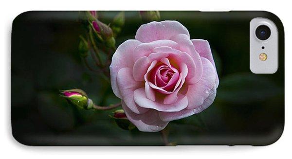 Love Is A Rose Iv IPhone Case by Al Bourassa