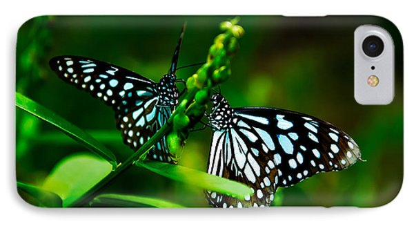 Love Is Like A Butterfly IPhone Case