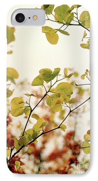 IPhone Case featuring the photograph Love Leaf by Rebecca Harman
