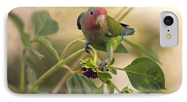 Lovebird On  Sunflower Branch  IPhone 7 Case by Saija  Lehtonen