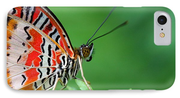 IPhone Case featuring the photograph Lovely Lacewing by Ruth Jolly