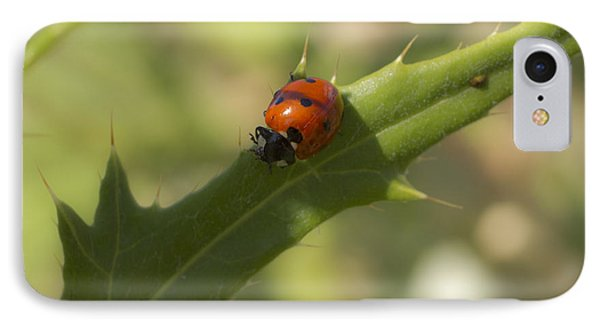 Lovely Lady Bug IPhone Case by Shelly Gunderson