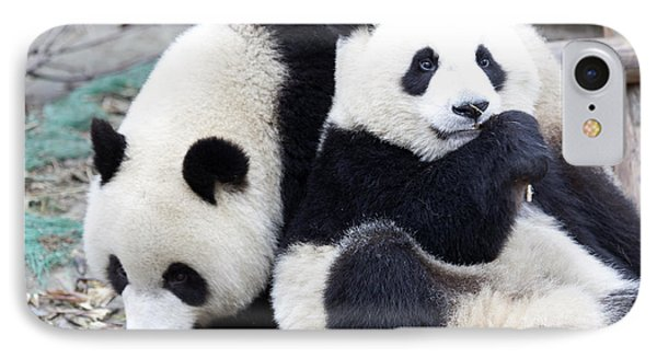 Lovely Pandas IPhone Case by King Wu