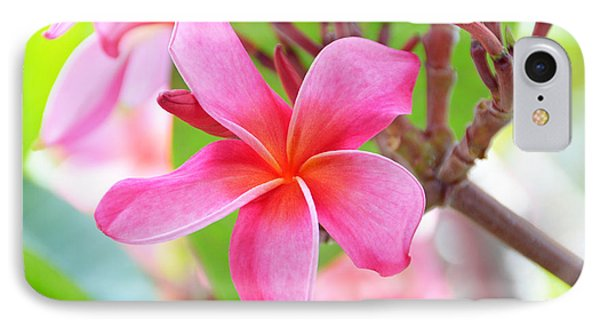 IPhone Case featuring the photograph Lovely Plumeria by David Lawson