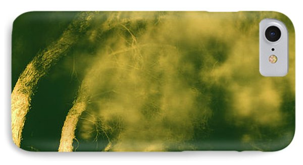 Low Angle View Of A Tree Blowing IPhone Case