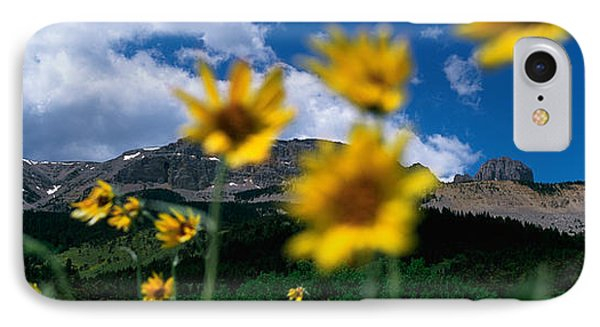 Low Angle View Of Mountains, Montana IPhone Case by Panoramic Images