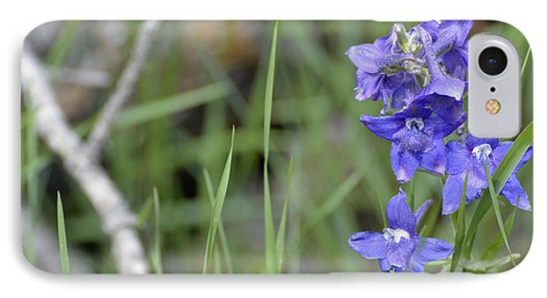 Low Larkspur In Yellowstone National Park Phone Case by Bruce Gourley