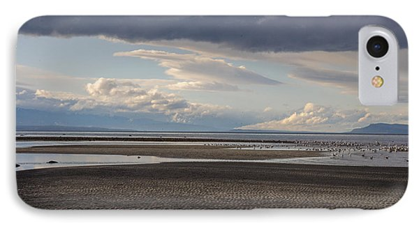 Low Tide  IPhone Case by Roxy Hurtubise