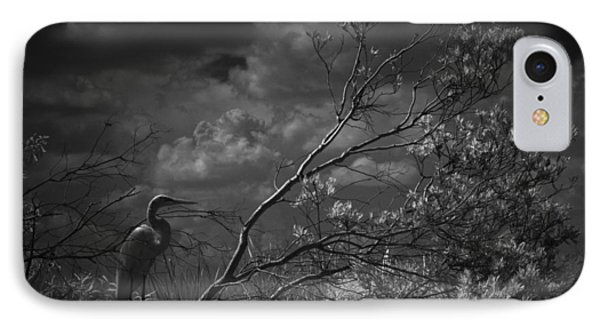 Loxahatchee Heron At Sunset IPhone Case by Bradley R Youngberg