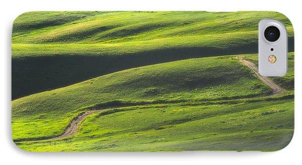 Luminous Green  Phone Case by Joan Herwig