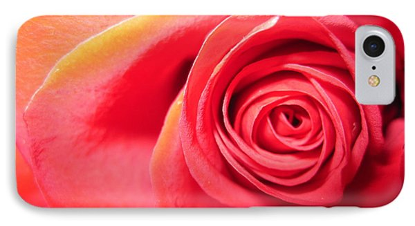 Luminous Red Rose 1 IPhone Case by Tara  Shalton