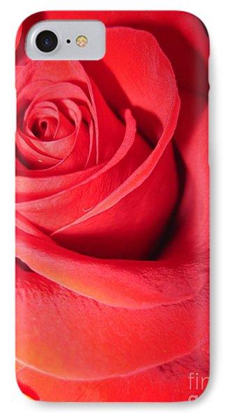 Luminous Red Rose 6 IPhone Case