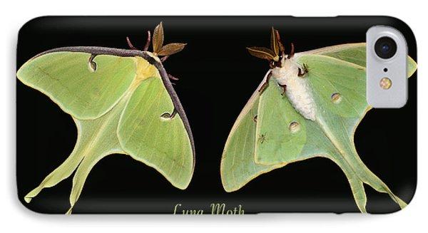Luna Moth Phone Case by Kristin Elmquist
