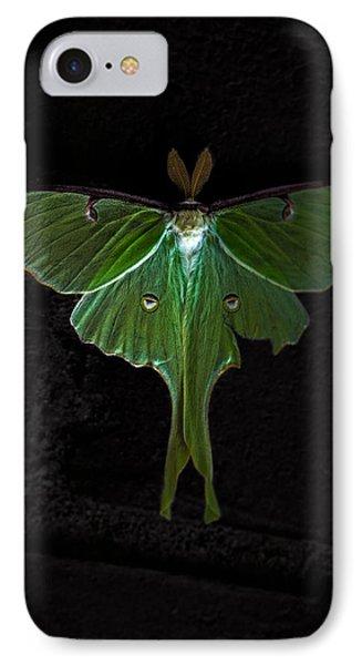 Lunar Moth IPhone Case by Bob Orsillo