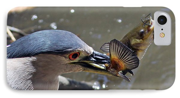 Lunch Is Served IPhone Case by Shoal Hollingsworth