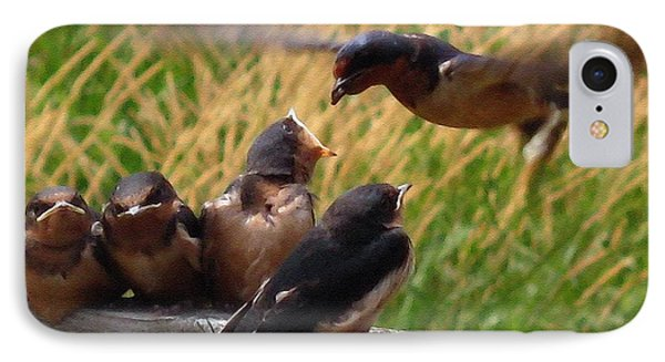 Lunch Is Served To The Fourth Baby Barn Swallow IPhone Case