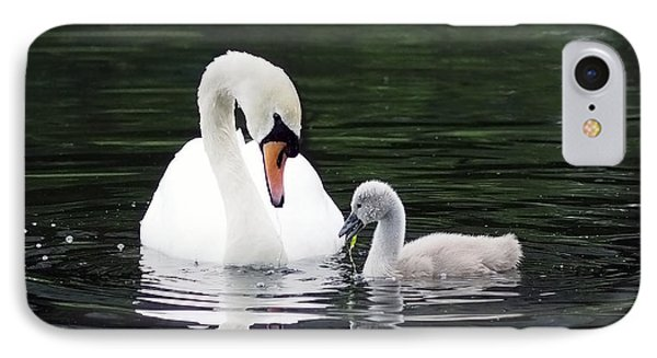 Lunchtime For Swan And Cygnet IPhone Case by Rona Black