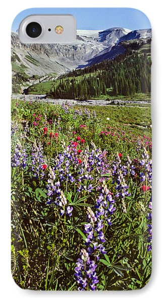 Lupine And Paintbrush Blooming At Indian Bar IPhone Case