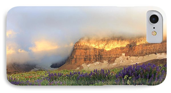 Lupine Wildflowers On Mount Timpanogos IPhone Case by Johnny Adolphson