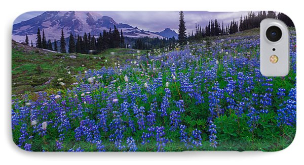 Lupines Dawn IPhone Case
