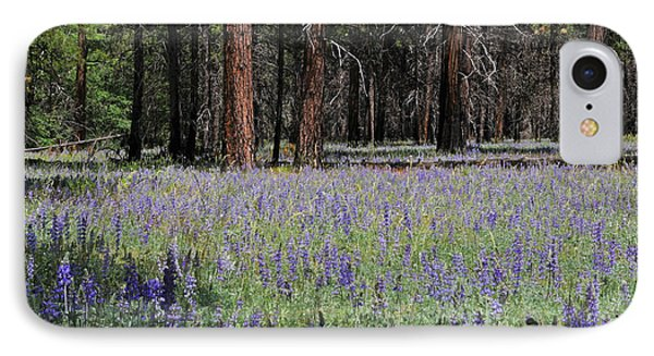 IPhone Case featuring the photograph Lupines In Yosemite Valley by Lynn Bauer