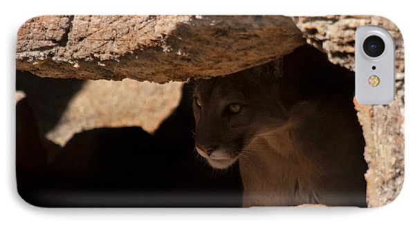 Lurking In The Shadows IPhone Case by Mike  Dawson