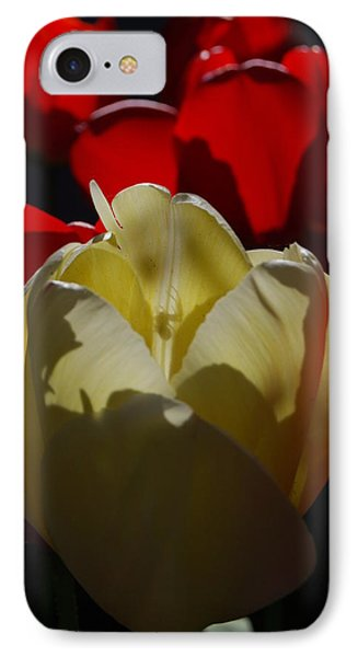 IPhone Case featuring the photograph Lurking Shadow by Jani Freimann