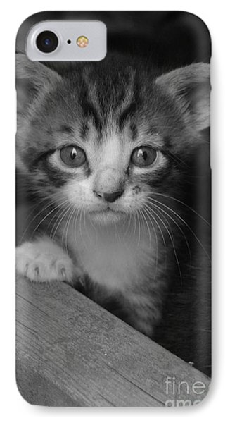 M Kitten IPhone Case