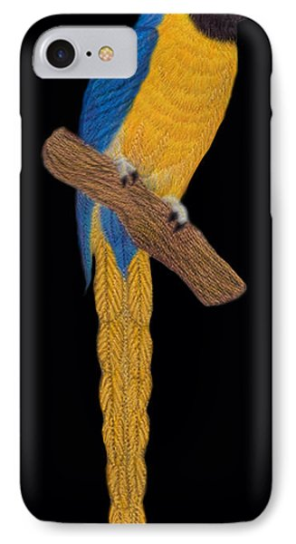 Macaw Parrot IPhone Case by Walter Colvin