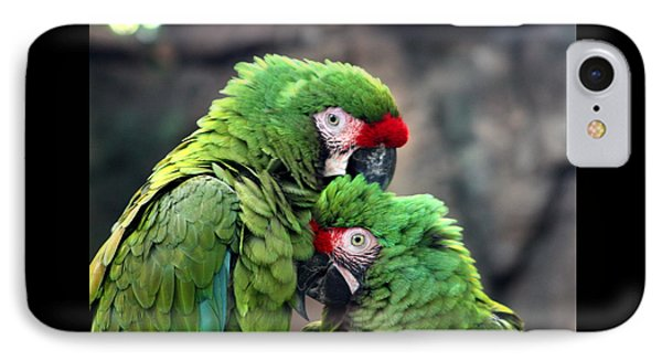 Macaws In Love IPhone Case by Diane Merkle