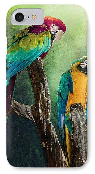 Macaws Siesta Time IPhone Case by Brian Tarr