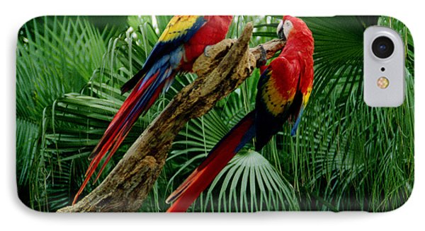 IPhone Case featuring the photograph Macaws by Tom Brickhouse