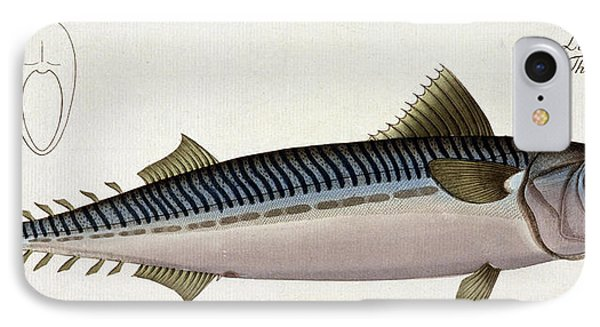 Mackerel IPhone Case by Andreas Ludwig Kruger