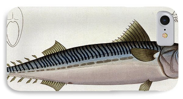 Mackerel Phone Case by Andreas Ludwig Kruger