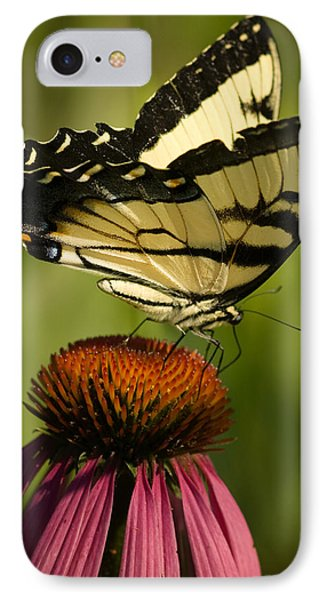 Macro Butterfly IPhone Case by Jack Zulli