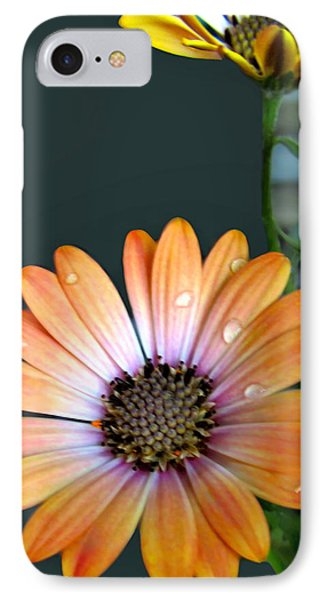 Macro Orange And Yellow Daisies With Water Droplets Phone Case by Danielle  Parent