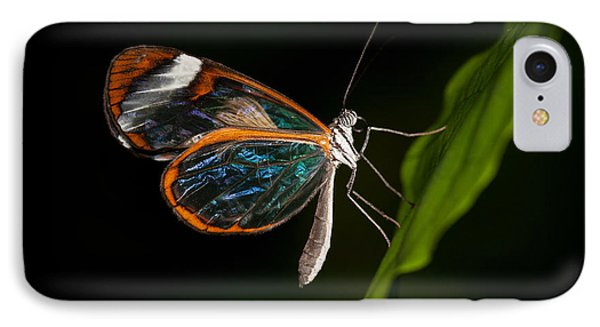 IPhone Case featuring the photograph Macro Photograph Of A Glasswinged Butterfly by Zoe Ferrie