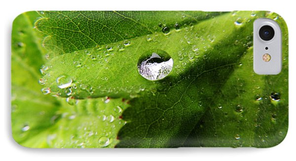 Macro Raindrop On Leaf IPhone Case by Karen Horn