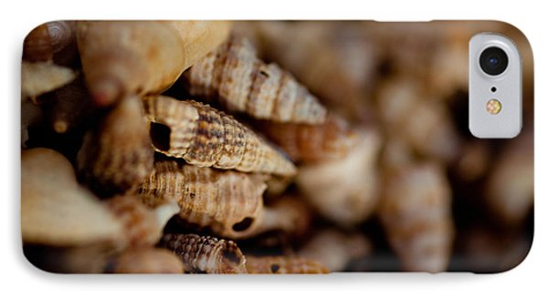Macro Shells IPhone Case by Carole Hinding